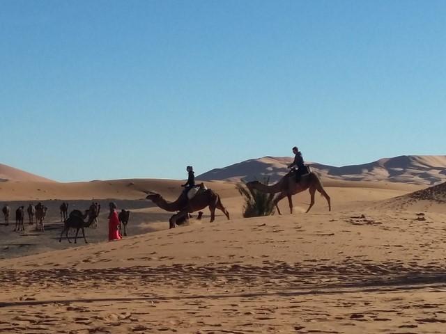 5 Days Tour From Fes to Merzouga Desert ending in Marrakech
