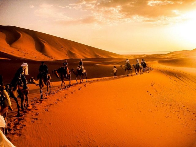 7 Days Tour From Fes to Merzouga Desert and Marrakech